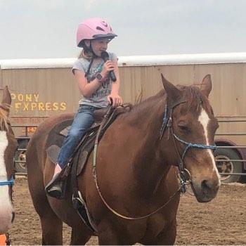 Lesson Horse Sam