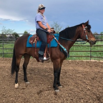 Lesson Horse Will