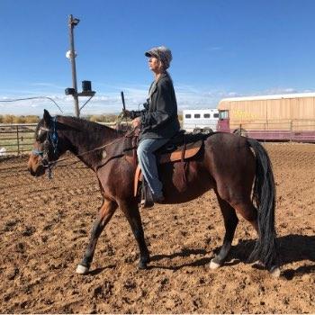 Lesson Horse Jewel